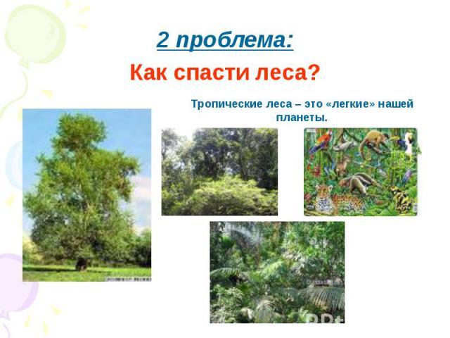 2 проблема:Как спасти леса?Тропические леса – это «легкие» нашей планеты.