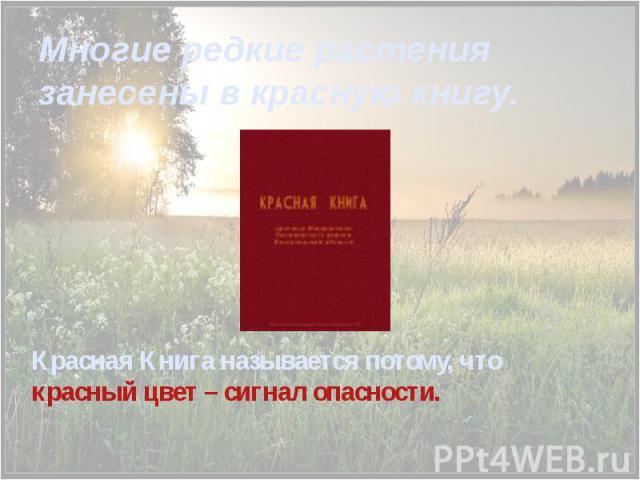 Многие редкие растения занесены в красную книгу. Красная Книга называется потому, что красный цвет – сигнал опасности.