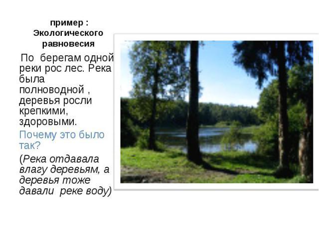пример : Экологического равновесия По берегам одной реки рос лес. Река была полноводной , деревья росли крепкими, здоровыми.Почему это было так?(Река отдавала влагу деревьям, а деревья тоже давали реке воду)