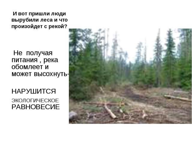 И вот пришли люди вырубили леса и что произойдет с рекой? Не получая питания , река обомлеет и может высохнуть-НАРУШИТСЯ ЭКОЛОГИЧЕСКОЕ РАВНОВЕСИЕ
