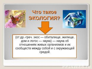 Что такое ЭКОЛОГИЯ? (от др.-греч. экос — обиталище, жилище, дом и логос — наука)