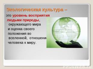 Экологическая культура – это уровень восприятия людьми природы, окружающего мира
