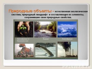 Природные объекты - естественная экологическая система, природный ландшафт и сос