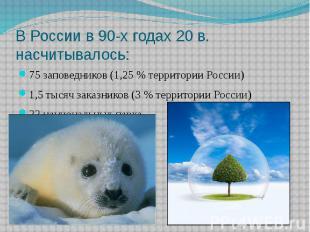 В России в 90-х годах 20 в. насчитывалось: 75 заповедников (1,25 % территории Ро