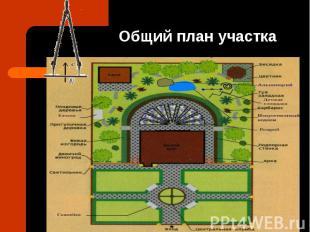 Общий план участка
