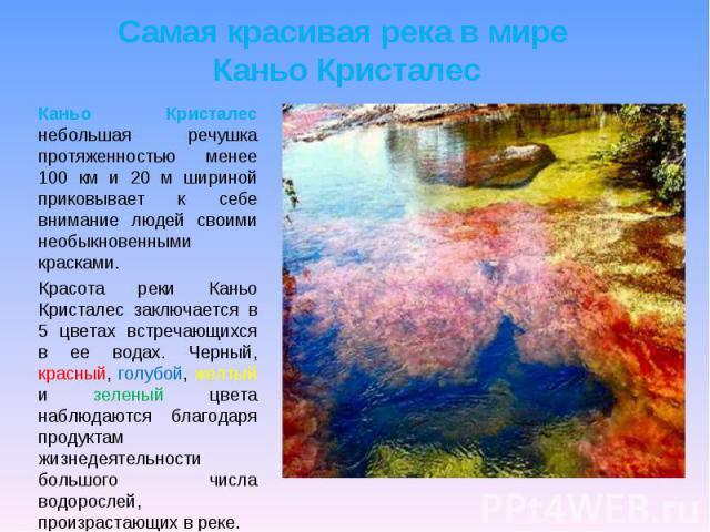 Самая красивая река в мире Каньо Кристалес Каньо Кристалес небольшая речушка протяженностью менее 100 км и 20 м шириной приковывает к себе внимание людей своими необыкновенными красками. Красота реки Каньо Кристалес заключается в 5 цветах встречающи…