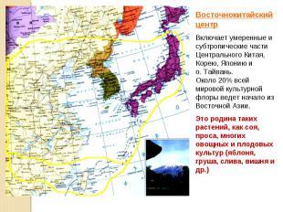 Восточнокитайский центр Включает умеренные и субтропические части Центрального К