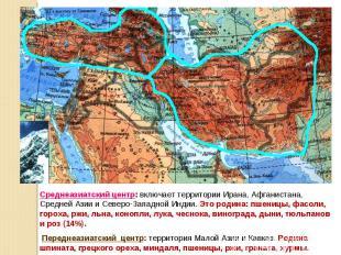 Среднеазиатский центр: включает территории Ирана, Афганистана, Средней Азии и Се
