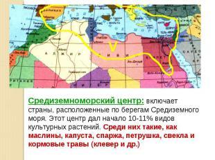 Средиземноморский центр: включает страны, расположенные по берегам Средиземного