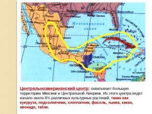 Центральноамериканский центр: охватывает большую территорию Мексики и Центрально