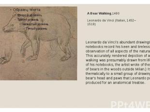 A Bear Walking,1490Leonardo da Vinci (Italian, 1452–1519)