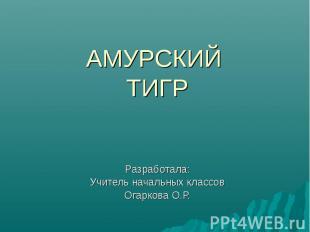 АМУРСКИЙ ТИГР Разработала: Учитель начальных классов Огаркова О.Р.