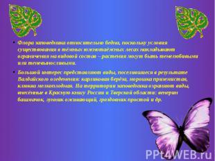 Флора заповедника относительно бедна, поскольку условия существования в тёмных ю