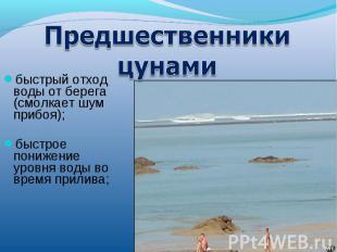 Предшественники цунамибыстрый отход воды от берега (смолкает шум прибоя); быстро