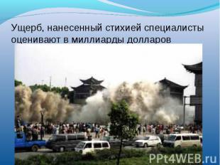 Ущерб, нанесенный стихией специалисты оценивают в миллиарды долларов