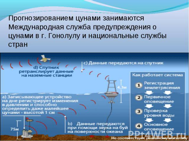 Прогнозированием цунами занимаются Международная служба предупреждения о цунами в г. Гонолулу и национальные службы стран