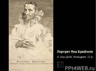 Портрет Яна БрейгеляА. Ван Дейк, Фландрия. 17 в.