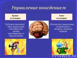 Управление поведениемХудожественный тип мышления, способность тонко чувствовать