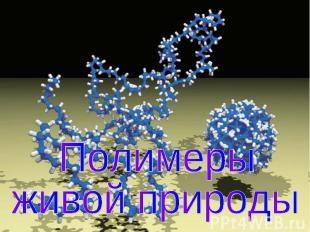 Полимеры живой природы