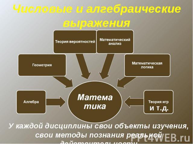 Числовые и алгебраические выраженияУ каждой дисциплины свои объекты изучения, свои методы познания реальной действительности