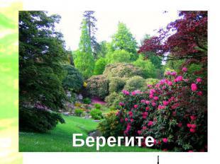 Берегите растения!!