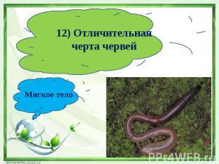 12) Отличительная черта червейМягкое тело