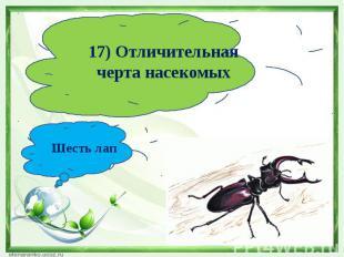 17) Отличительная черта насекомыхШесть лап