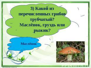 3) Какой из перечисленных грибов трубчатый?Маслёнок, груздь или рыжик?Маслёнок