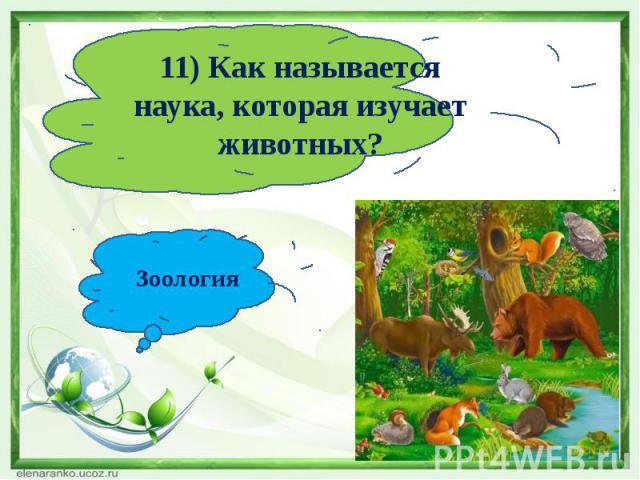 11) Как называется наука, которая изучает животных?Зоология
