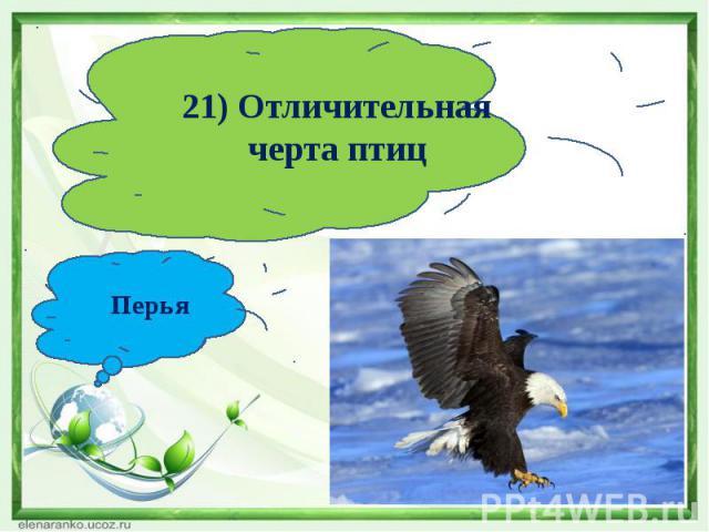 21) Отличительная черта птицПерья