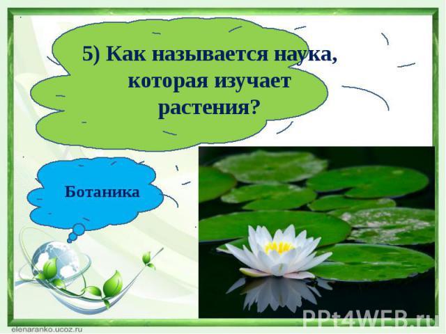 5) Как называется наука, которая изучает растения?Ботаника
