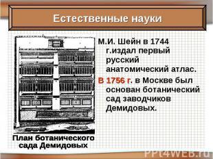 М.И. Шейн в 1744 г.издал первый русский анатомический атлас. В 1756 г. в Москве