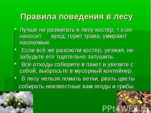 Правила поведения в лесуЛучше не разжигать в лесу костёр, т.к.он наносит вред: г