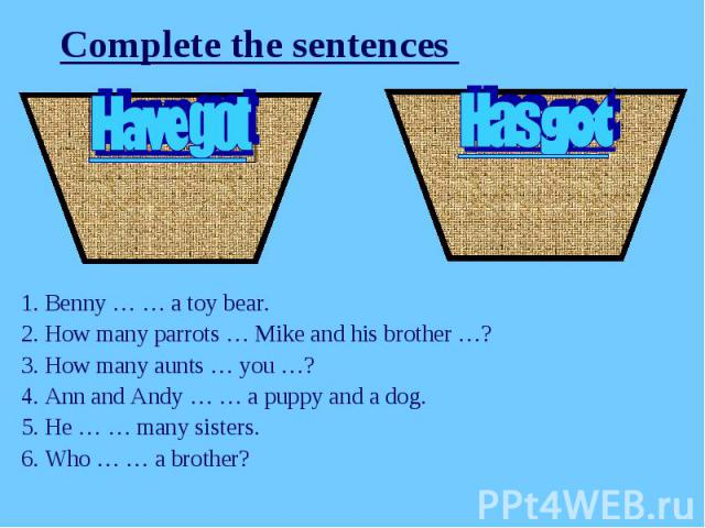 Complete the sentences 1. Benny … … a toy bear.2. How many parrots … Mike and his brother …?3. How many aunts … you …?4. Ann and Andy … … a puppy and a dog.5. He … … many sisters.6. Who … … a brother?