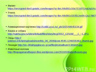 Филин https://encrypted-tbn0.gstatic.com/images?q=tbn:ANd9GcS0uTESBTDodJojUAcSdo