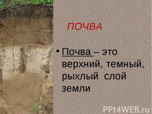 Почва – это верхний, темный, рыхлый слой землиПочва – это верхний, темный, рыхлы