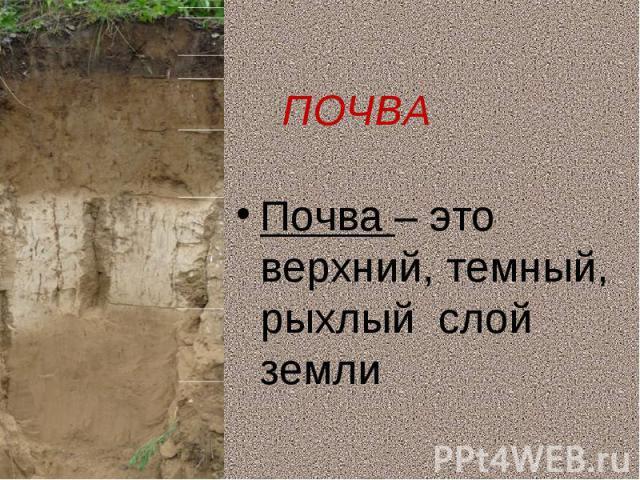 Почва – это верхний, темный, рыхлый слой землиПочва – это верхний, темный, рыхлый слой земли