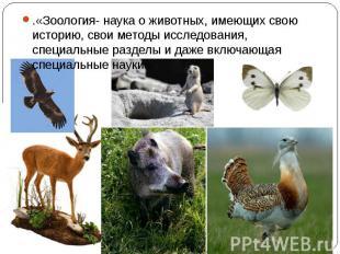 .«Зоология- наука о животных, имеющих свою историю, свои методы исследования, сп