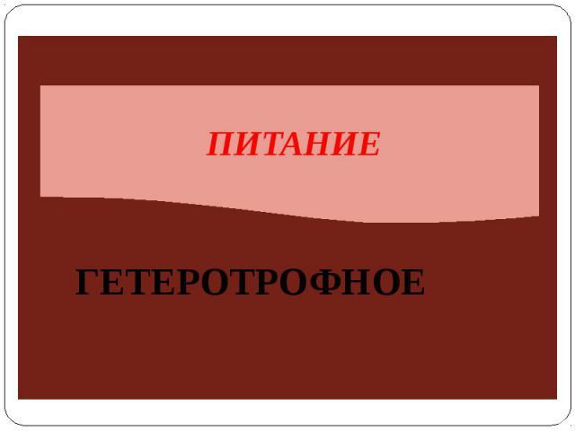 ПИТАНИЕГЕТЕРОТРОФНОЕ