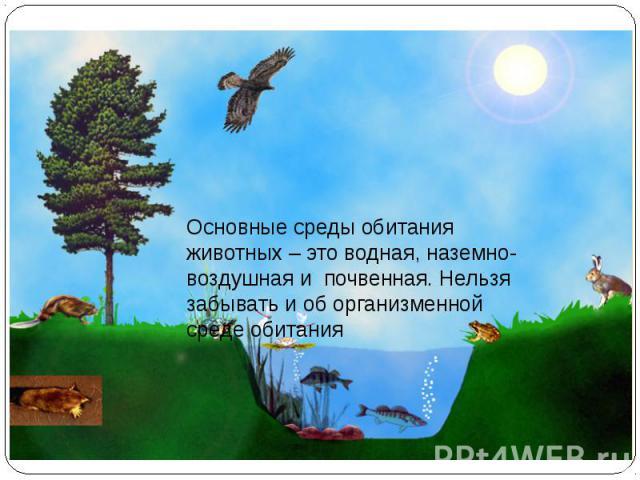 Основные среды обитания животных – это водная, наземно-воздушная и почвенная. Нельзя забывать и об организменной среде обитания