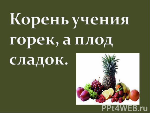 Корень учения горек, а плод сладок.
