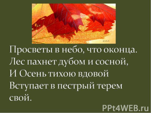 Просветы в небо, что оконца.Лес пахнет дубом и сосной,И Осень тихою вдовойВступает в пестрый терем свой.