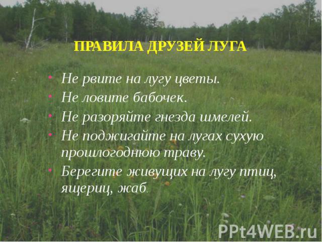 Не рвите на лугу цветы.Не ловите бабочек.Не разоряйте гнезда шмелей.Не поджигайте на лугах сухую прошлогоднюю траву.Берегите живущих на лугу птиц, ящериц, жаб.