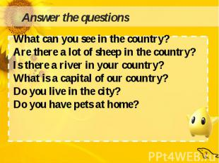 What can you see in the country?Are there a lot of sheep in the country?Is there