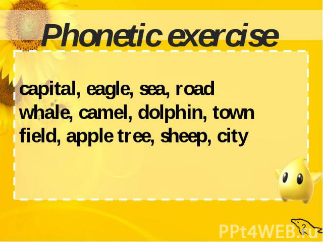 Phonetic exercisecapital, eagle, sea, roadwhale, camel, dolphin, townfield, apple tree, sheep, city