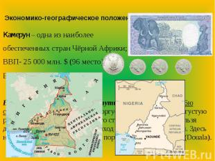 Экономико-географическое положениеКамерун – одна из наиболее обеспеченных стран