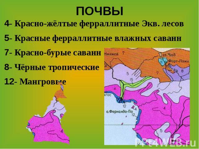 ПОЧВЫ4- Красно-жёлтые ферраллитные Экв. лесов5- Красные ферраллитные влажных саванн7- Красно-бурые саванн 8- Чёрные тропические 12- Мангровые