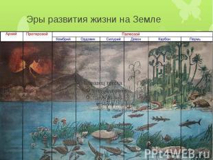Эры развития жизни на Земле