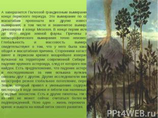 А завершается Палеозой грандиозным вымиранием в конце пермского периода. Это вым