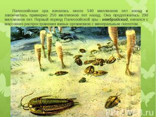 Палеозойская эра началась около 540 миллионов лет назад и закончилась примерно 2